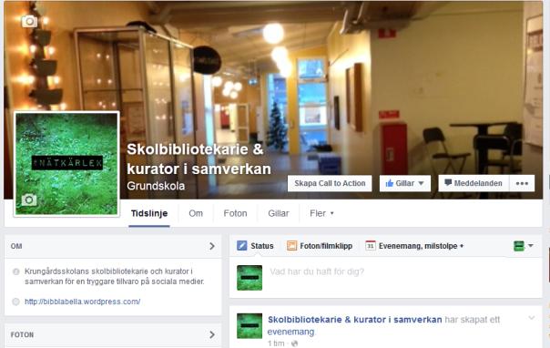 Fb sida skärmdump
